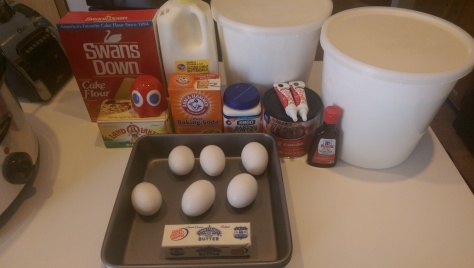 Cake ingredients pictured only.